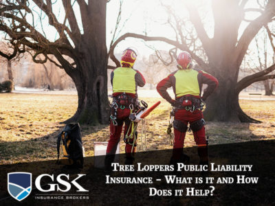Tree Loppers Public Liability Insurance What Is It and How Does it Help